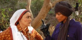 TV series Na Aana Is Des Laado to conclude