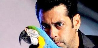 Bigg Boss 6 launches in Mumbai by host Salman Khan