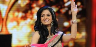 Sridevi to be a part of Mr India 2
