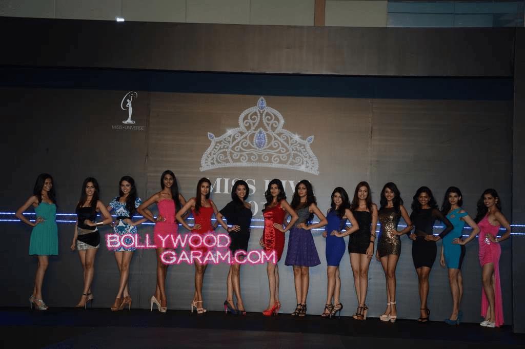 Miss Diva 2013-2