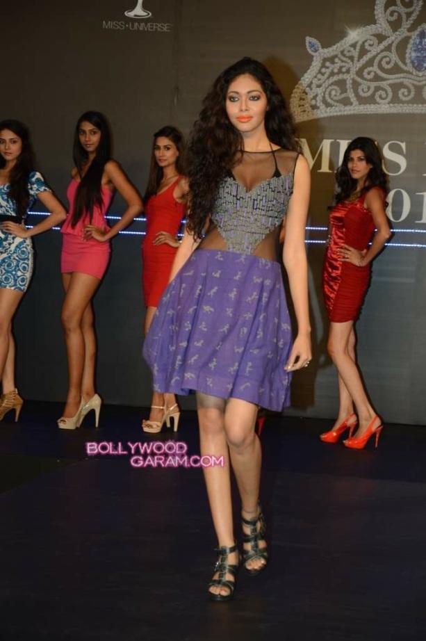 Miss Diva 2013-3