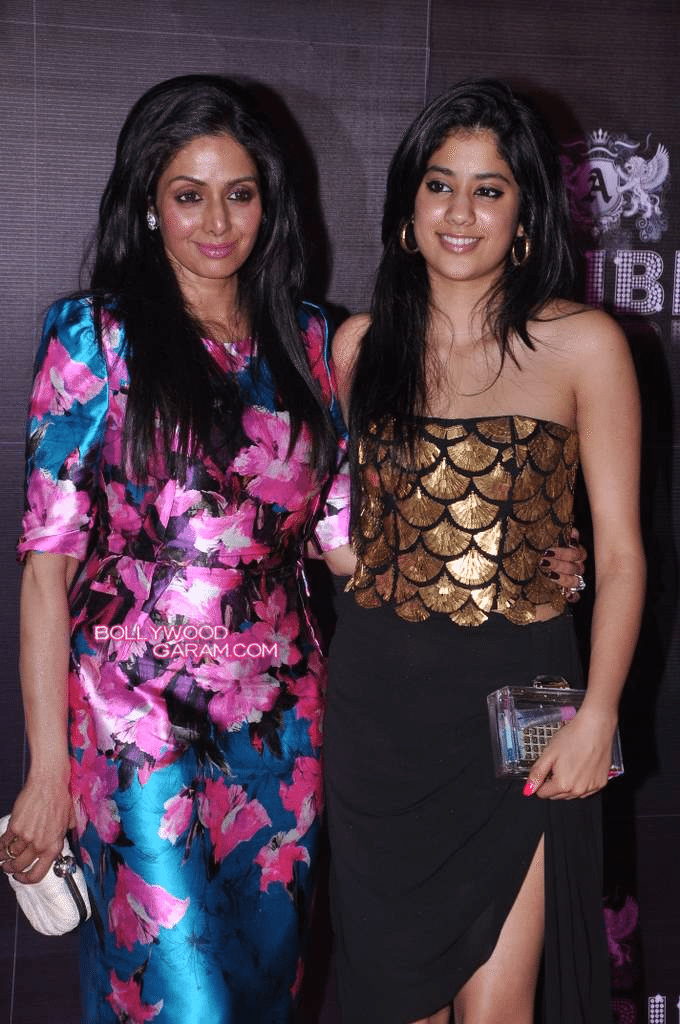 Sridevi-English-Vinglish-party