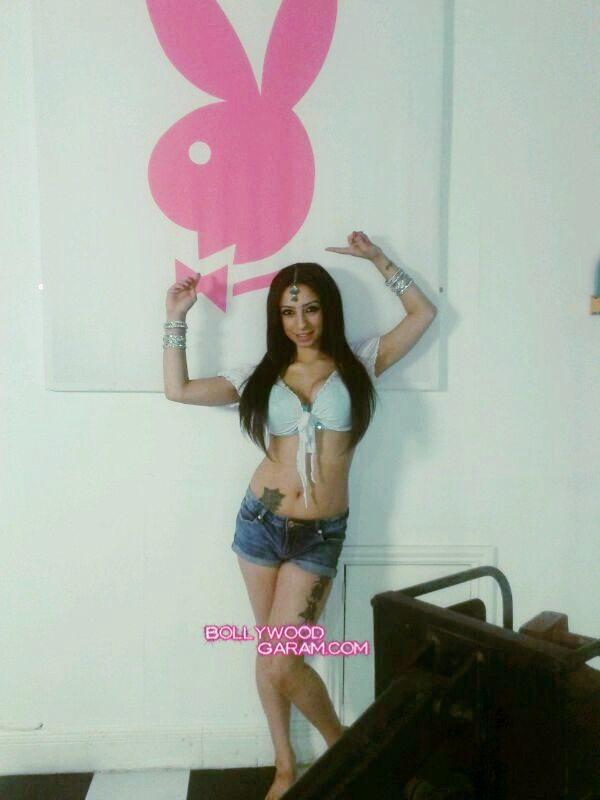 Shanti Dynamite Playboy Hot-1