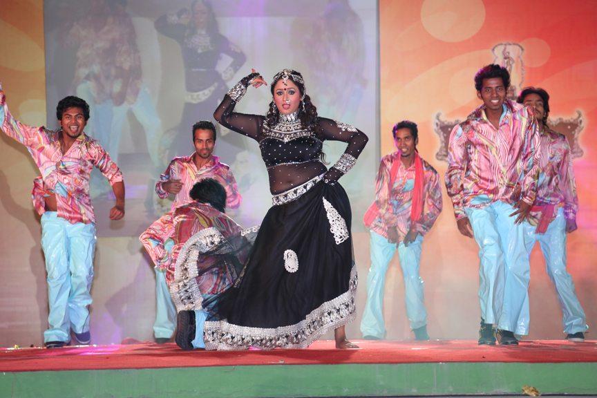 Bhojpuri awards 2013 (6)