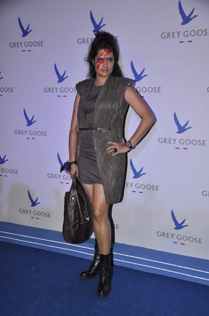 Grey goose (4)