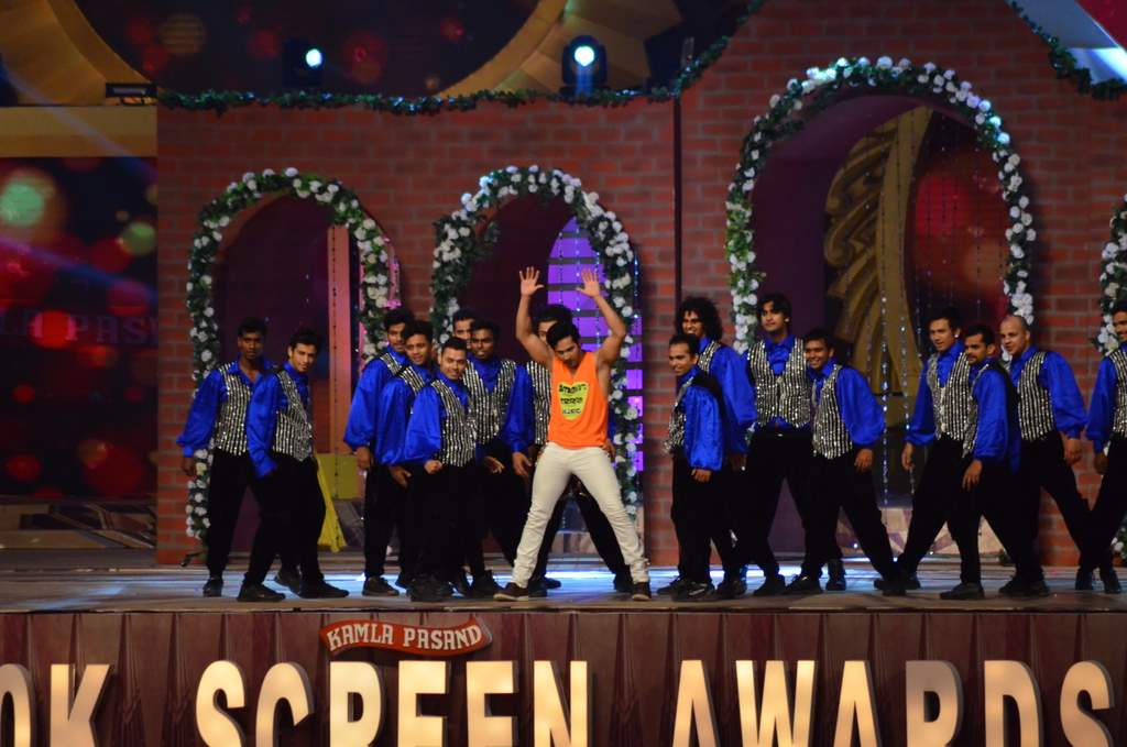 Screen awards 2014 (3)