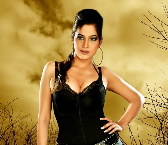 Tanisha Singh to enter Bollywood this 2014