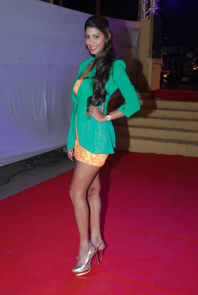 Yaariyan success bash (4)