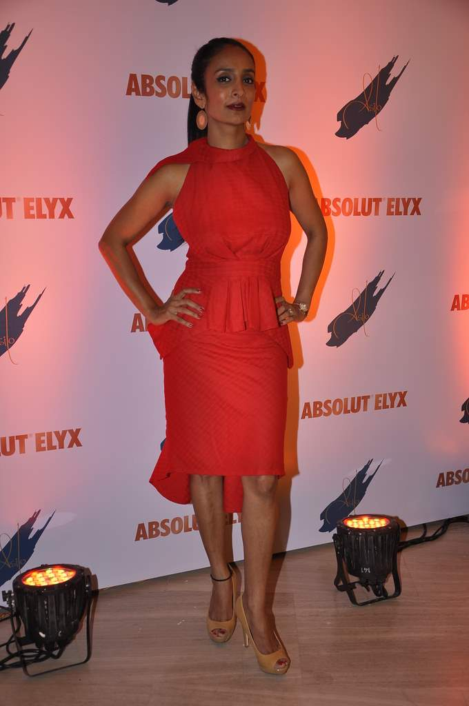 ABSOLUT party (2)