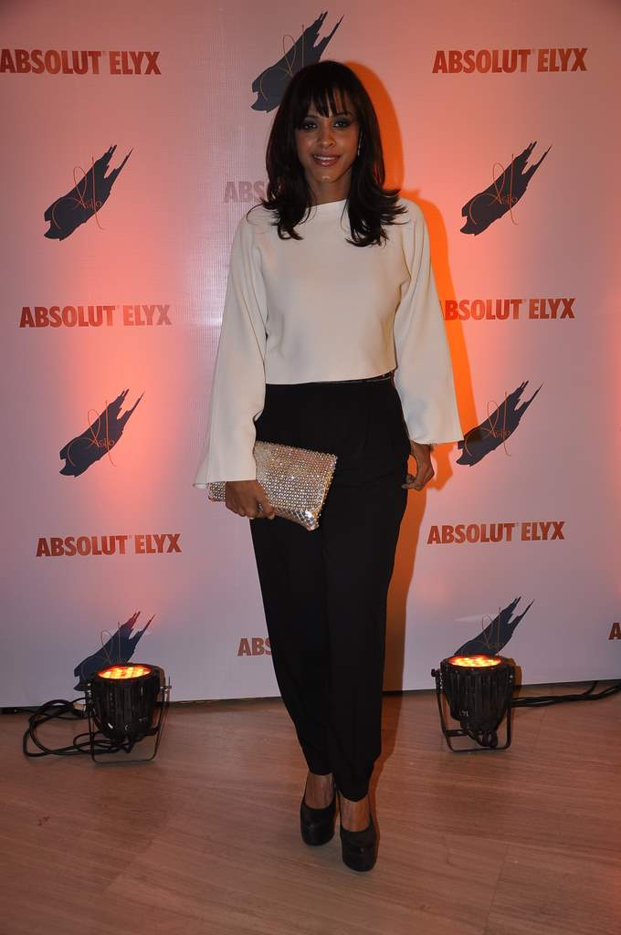 ABSOLUT party (4)
