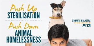 Sidharth Malhotra teams up with PETA to promote dog sterilization