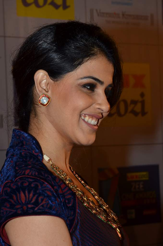 Zee cine awards 2014 (2)