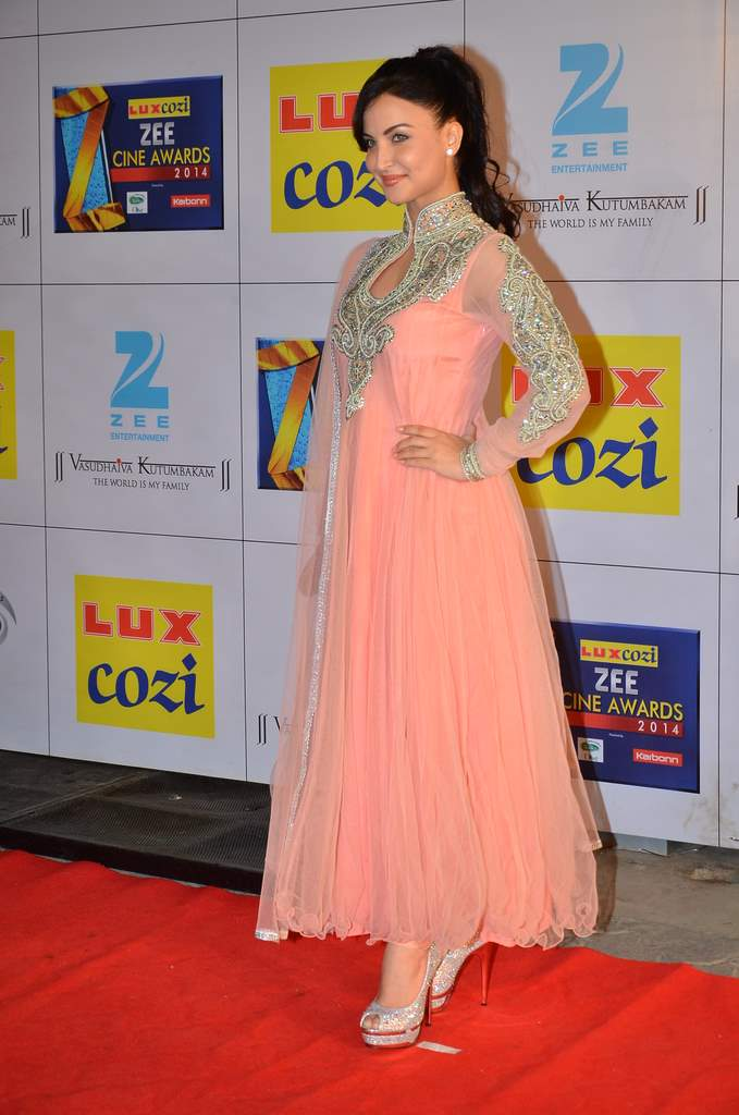 Zee cine awards 2014 (3)
