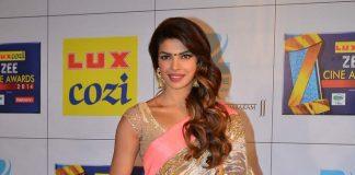 Deepika Padukone, Priyanka Chopra, Sonali Bendre attend Zee Cine Awards 2014