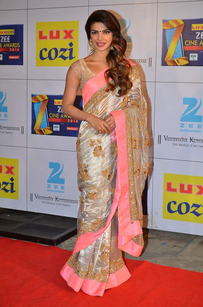 Zee cine awards 2014 (4)