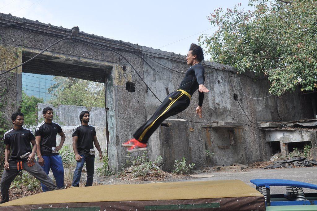 tiger stunt (4)