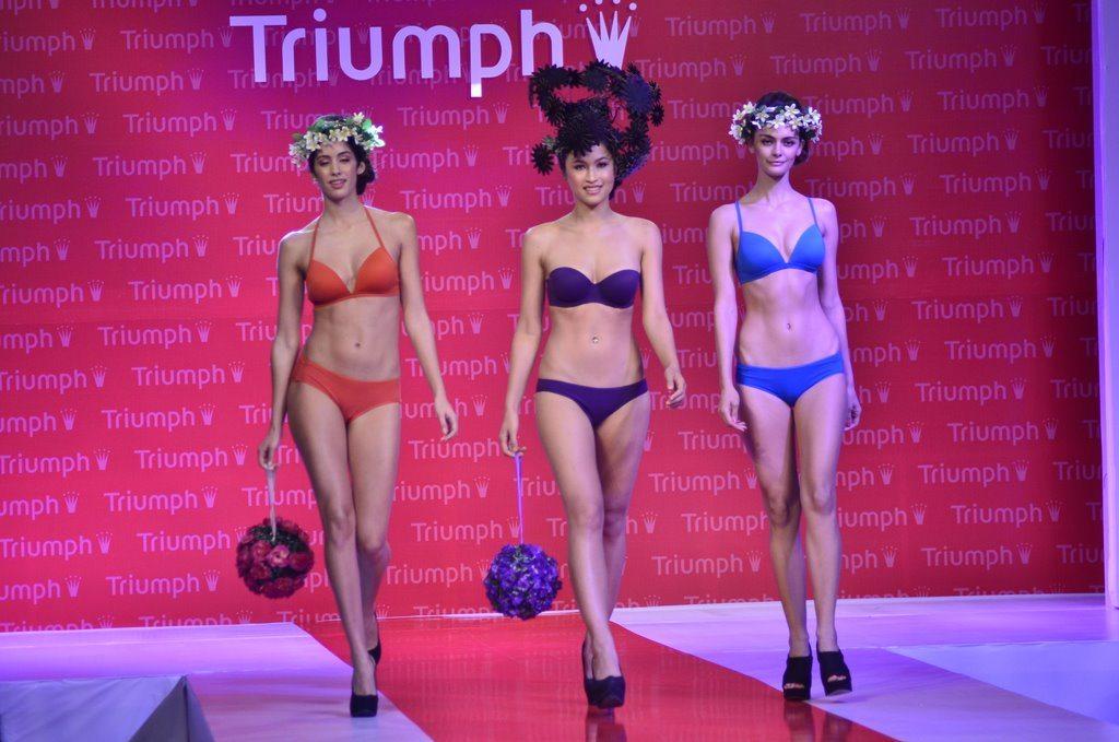 triumph (4)