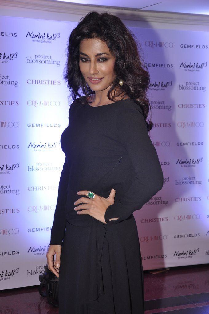 Chitrangada gemfield (4)