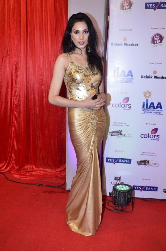 Indian_achievers_awards_201417
