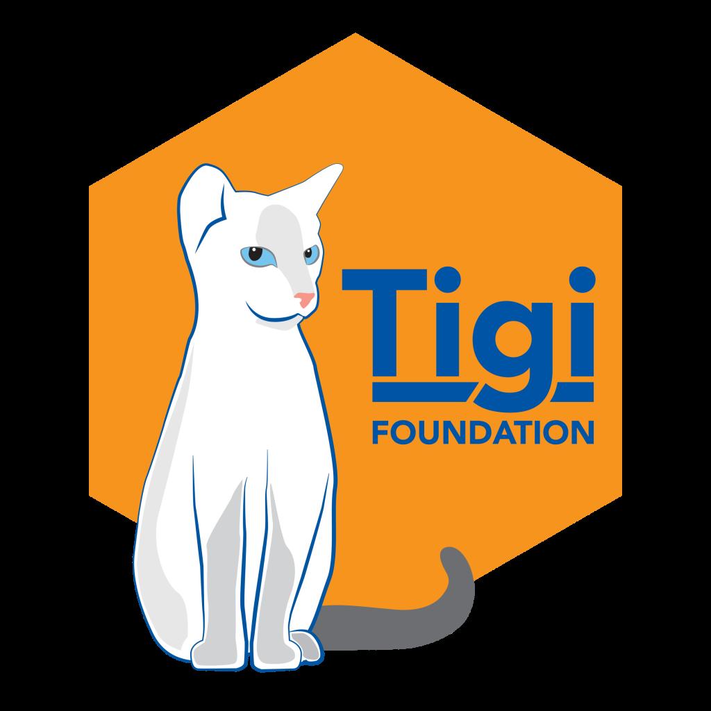 Tigi foundation