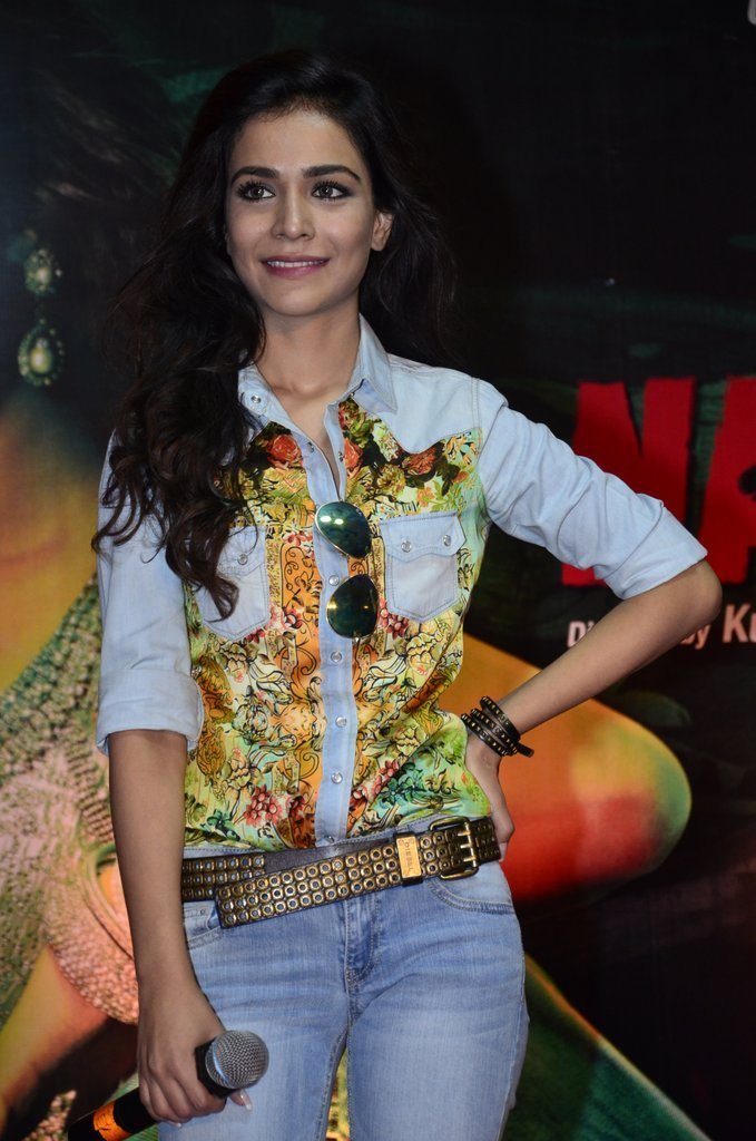 raja natwarlal promotions (5)