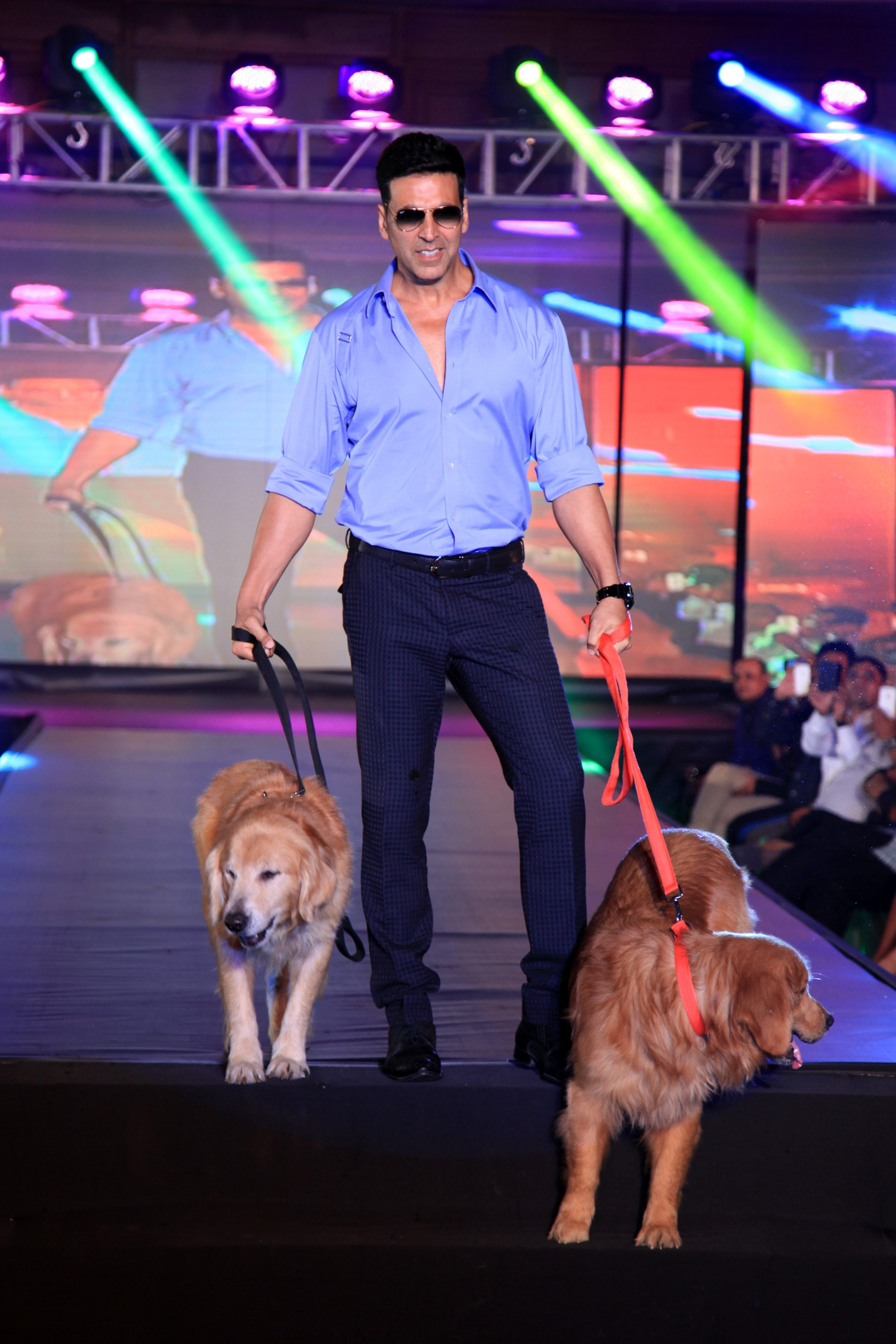 ENtertainment-with-dogs-10