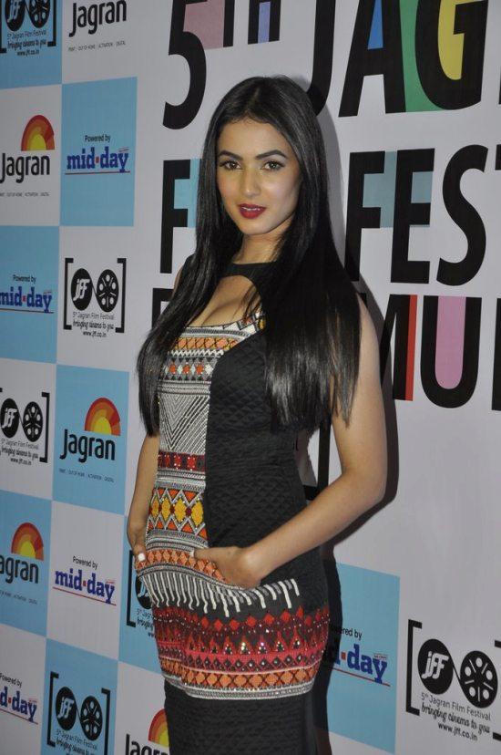 Jagran_film_festival_2014282
