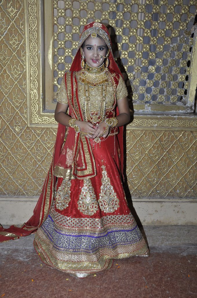 Maharana pratap wedding (7)