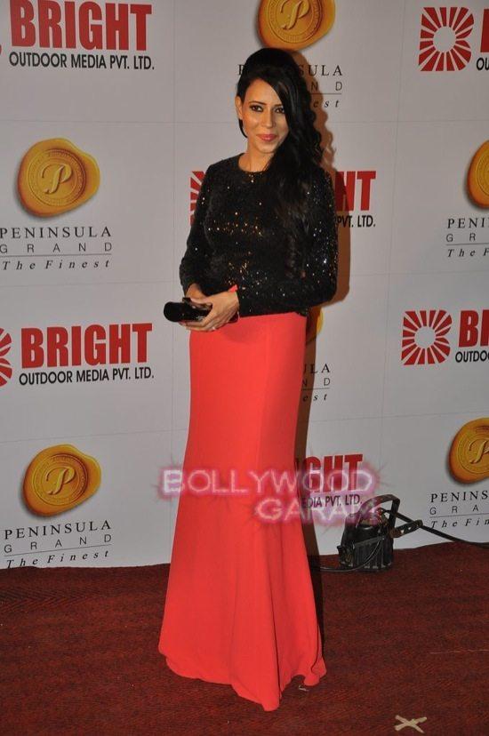 Bright awards_ranbir kapoor_hrithik roshan-25