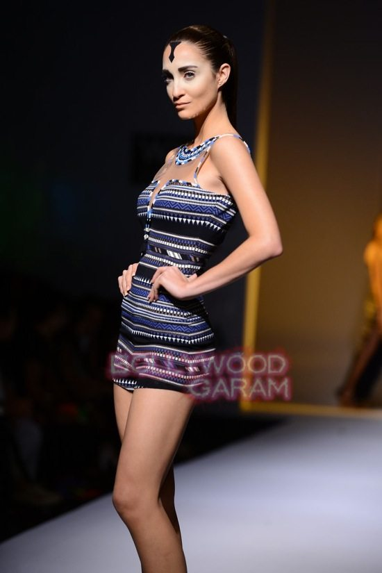 Malini collection_Wills India Fashion Week 2014-14