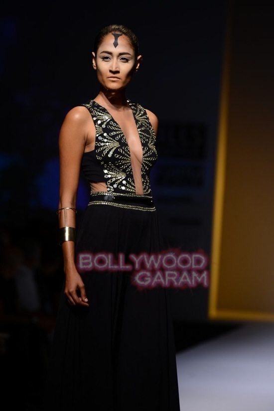 Malini collection_Wills India Fashion Week 2014-17