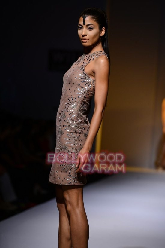 Malini collection_Wills India Fashion Week 2014-18