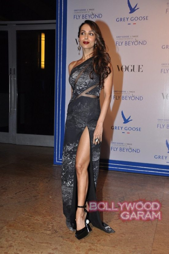 Grey Goose India Fly Beyond Awards-8