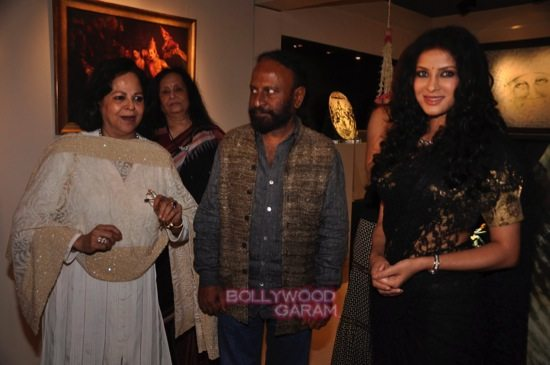 Rang rasiya art exhibition_Nandana Sen-0