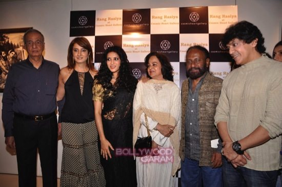 Rang rasiya art exhibition_Nandana Sen-3