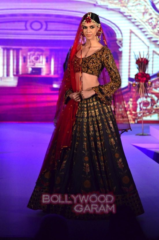 Vaani Kapoor showstopper at Royal Fable-15