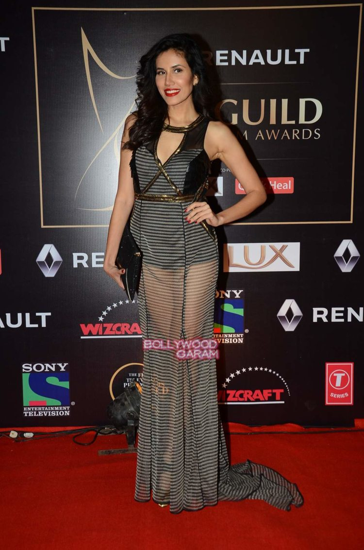 guild awards 201517
