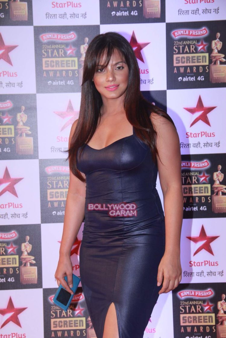 star screen awards11