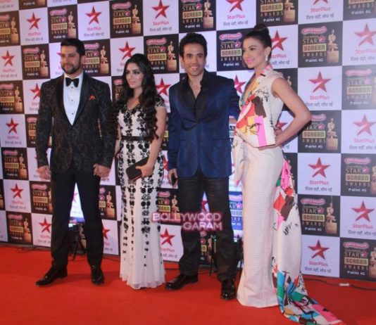 Star Screen Awards  2016 – celebrities shine at red carpet  – Photos