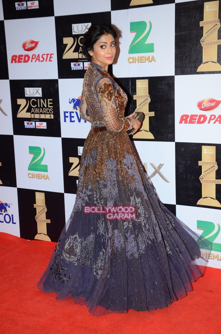 zee cine awards 165