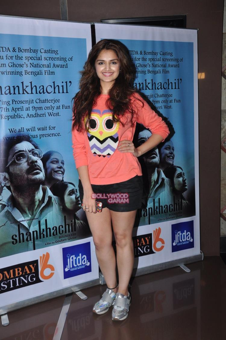 Shankhachil screening1