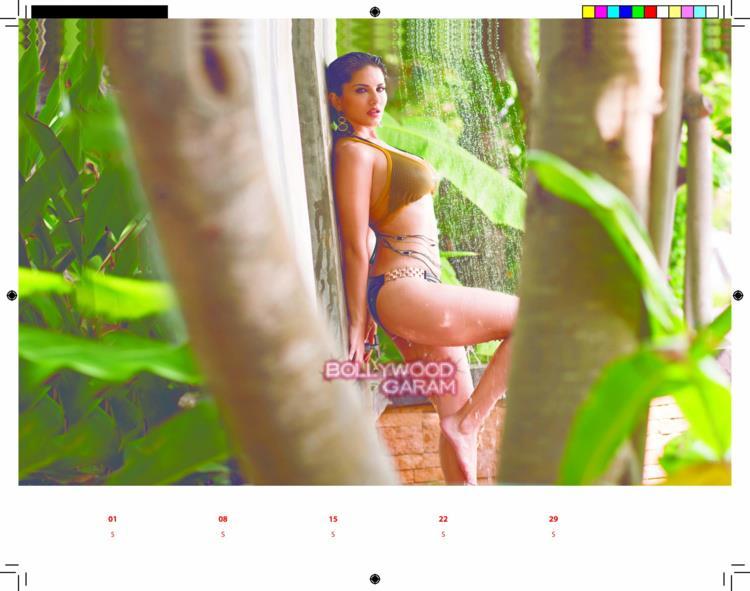 Sunny Leone calendar11