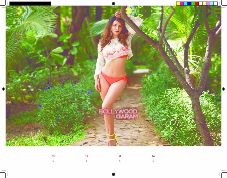 Sunny Leone calendar5