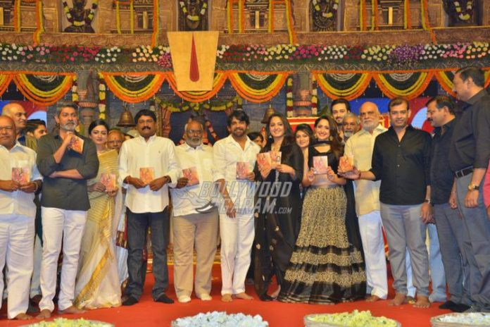 om-namo-audio-launch6