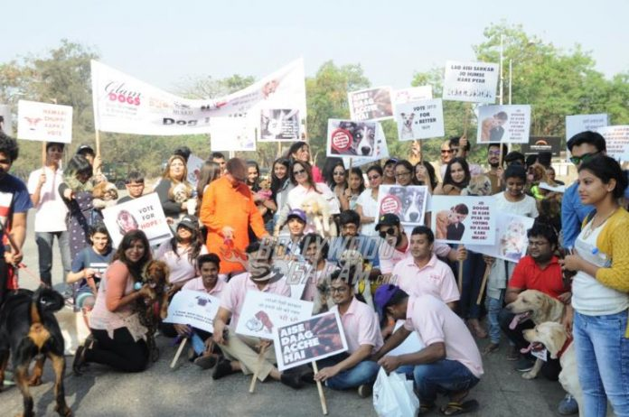 Smita Thackeray dog rally7