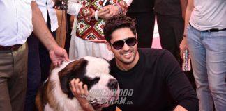 Sidharth Malhotra and Aftab Shivdasani Grace 'Glam Dogs Show' Pet Festival