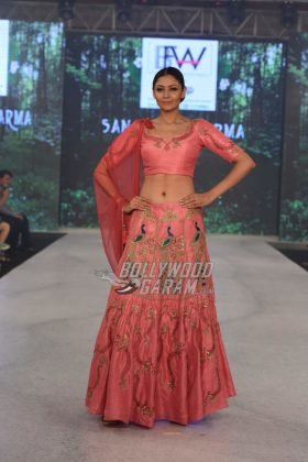 Sangeeta-Sharma-Collection-IBFW-2017-15