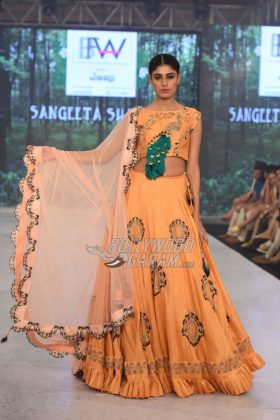 Sangeeta-Sharma-Collection-IBFW-2017-18