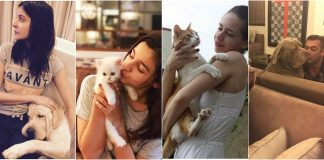 These Bollywood celebrities and their pets will simply melt your heart – Photos!