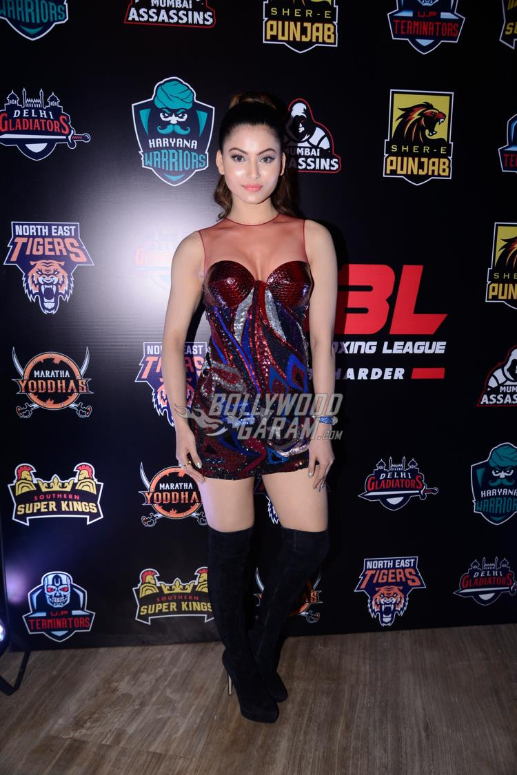 Super Boxing League 2017
